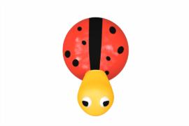 1410 9617 Splash Ladybird
