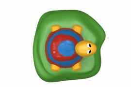 1110 8929 Turtle Ba