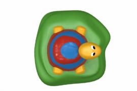 1110 8929 Turtle