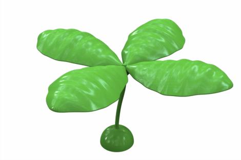 1110 9615 Shadow Plant