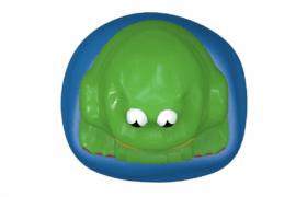 1110 9701 Frog Ba