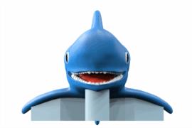1110 9867 Shark Va