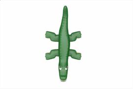 1120 9922 Crocodile Ba