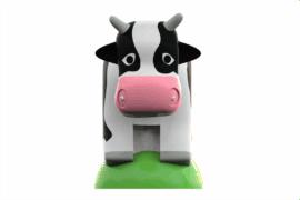 1130 9707 Cow Va
